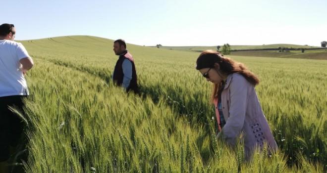 Tarım Danışmanları Sahada