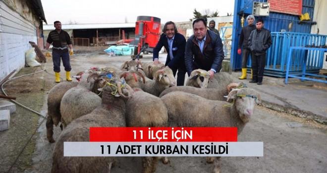 AK Parti Tekirdağ Yönetimi 11 İlçe için 11 Adet Kurban Kesti