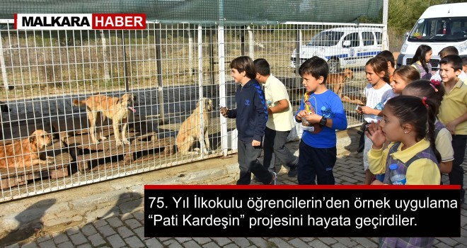 Çocuklar'dan Hayvan Sevgisi