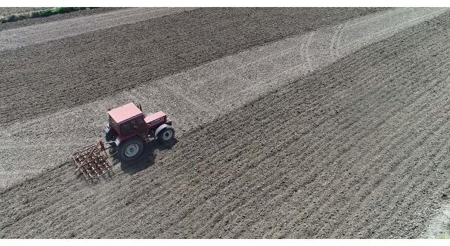 Edirne'de çiftçinin 'beyaz altını' toprakla buluştu