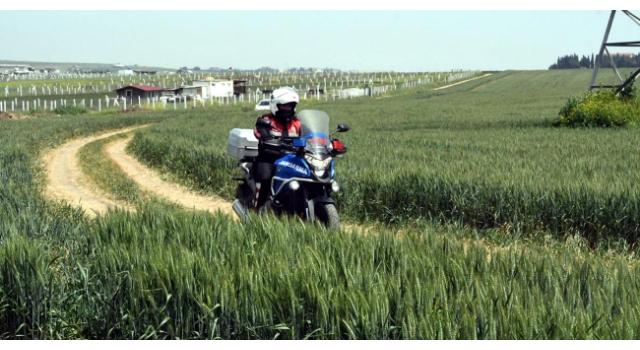 İstanbul-Tekirdağ sınırındaki tarlalarda, jandarmadan motosikletli denetim