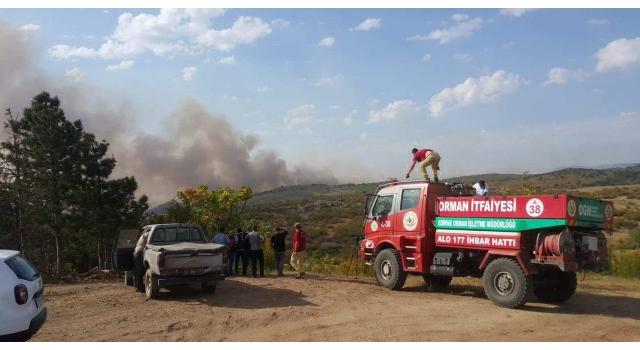 Bulgaristan sınırında orman yangını