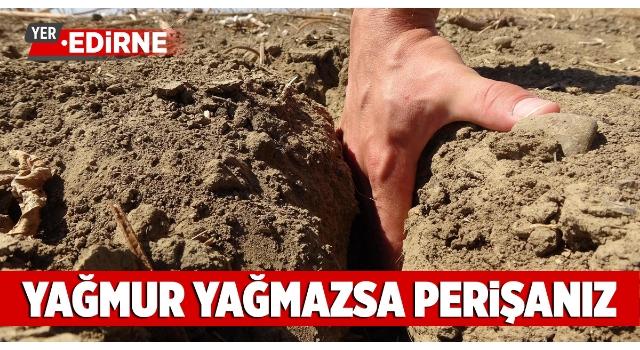Edirne'de kuraklık toprakları çatlattı, çiftçi ekim yapamıyor