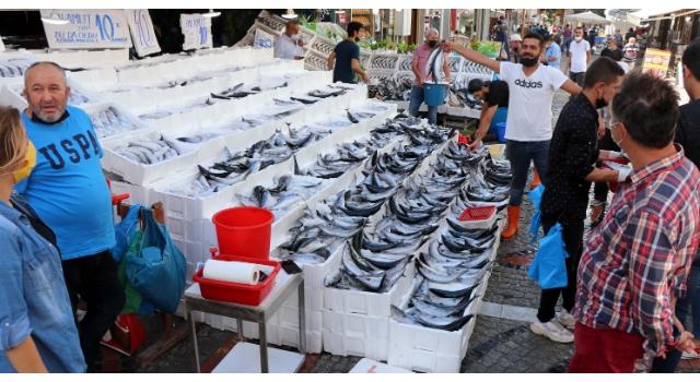 Edirne'de, palamut tezgahlarda 10 liraya kadar düştü