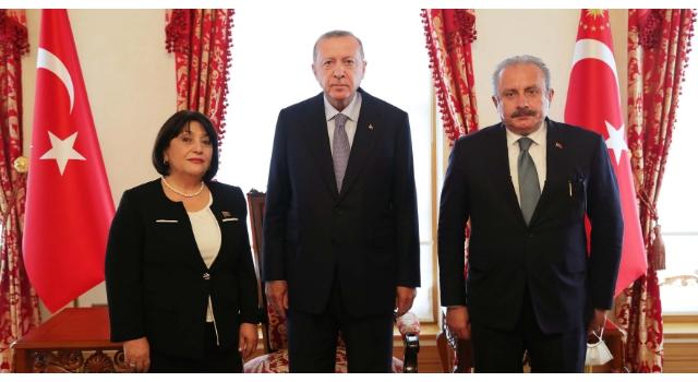 Erdoğan, Azerbaycan Milli Meclis Başkanı Gafarova'yı kabul etti