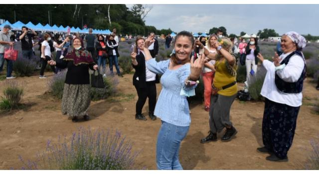 Lavanta Tarla Günleri'nde mor tarlalar festival alanına döndü