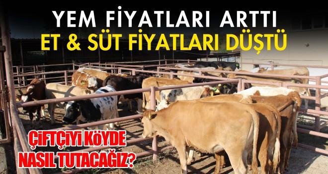 Süt yem paritesi bozuldu süt üretimi yüzde 15 düştü!