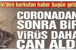 Çin'den korkutan haber! Şimdi de başka bir virüs can almaya başladı