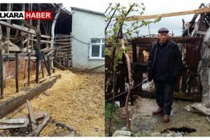 Malkara'da 3 Büyükbaş Hayvan Çalındı