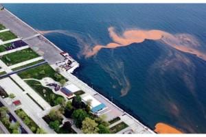Tekirdağ sahilleri yeniden turuncu renge büründü