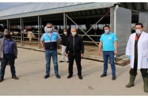 Keşan'da canlı hayvan pazarı tedbirlerle açıldı
