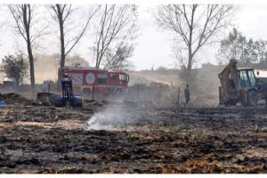 Malkara'da otluk yangınında asırlık ağaç zarar gördü