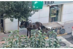 At arabasını kaldırıma park eden kişiye 132 lira ceza