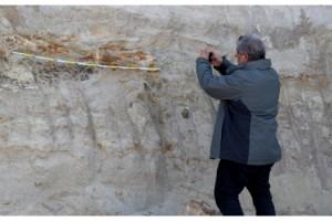 Edirne'de 8 milyon yıllık mamut fosilleri bulundu