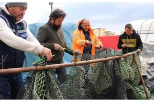 Tekirdağlı balıkçılar, 'deniz salyası' yüzünden sezonu erken kapattı
