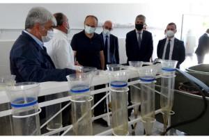 5 milyon kapasiteli İpsala Su Ürünleri İstasyonu'nda balık sağımı
