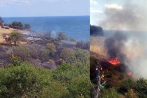 Tekirdağ'da makilik ve ağaçlık alanda yangını