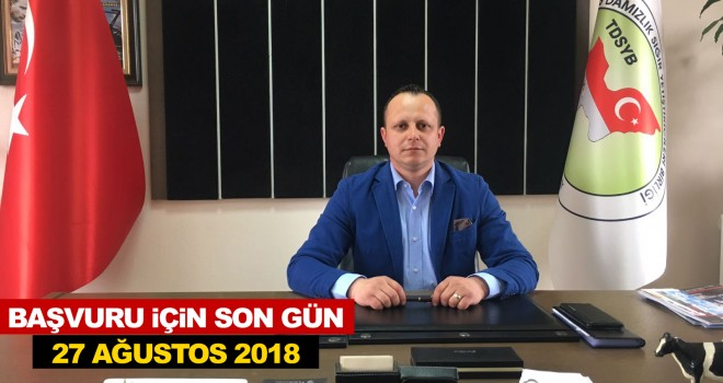 """TEKİRDAĞ DSYB """"DAMIZLIK İNEK YARIŞMASI"""" DÜZENLİYOR"""